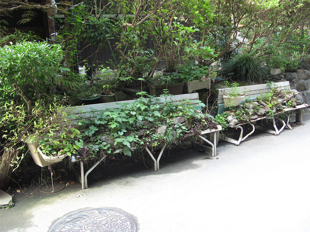 Public Seating Rock Garden